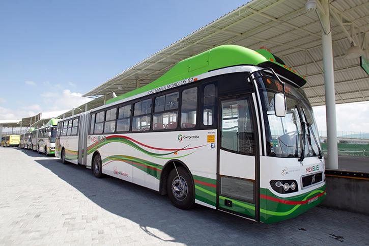 12mexibus7
